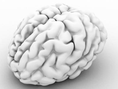 Imagen de un cerebro en 3D
